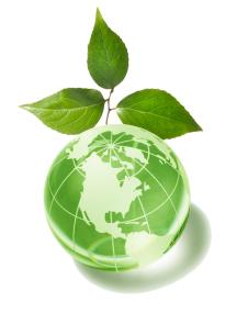 ctn1024_465_10000_330_-11__globe-and-leaf